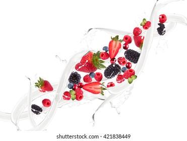 Fruit, berry mix in milk splash, isolated on white background