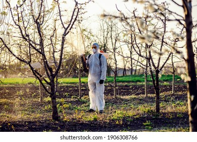 Fruit grower in protective suit and mask walking trough orchard with pollinator machine on his backs and spraying trees with pesticides.