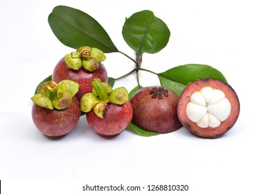 fruit Mangosteen Fresh
