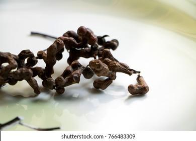 Fruit of Oriental raisin tree. (Hovenia dulcis THUNB)