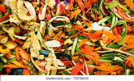 Biodegradable Waste Images Stock Photos Amp Vectors