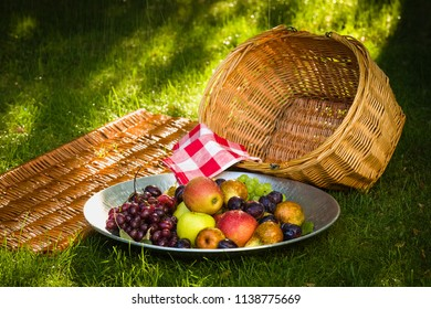 Fruit picking at the end of the summer - apples, pears, plums and grapes