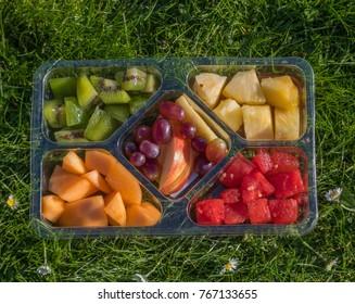 Fruit platter on grass for a picnic