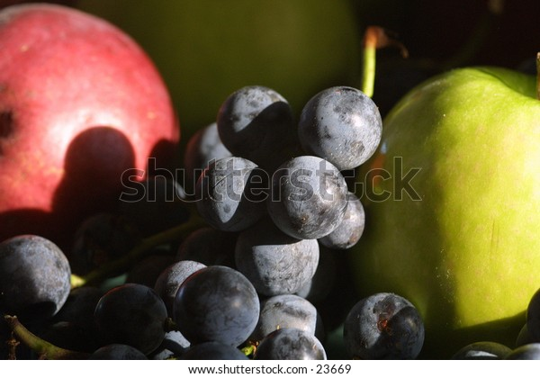 Fruit still life in early morning sun. Grapes and apples.