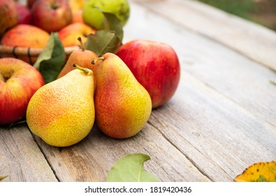 Fruits: apples and pears on old wooden table. Bio Healthy food.