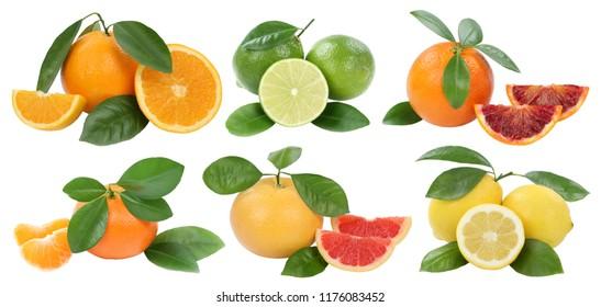 Fruits collection oranges mandarin lemon grapefruit isolated on a white background