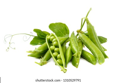 Fruits of green peas isolated on white background.