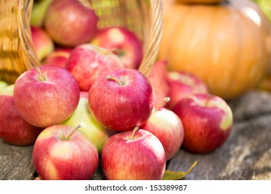 Fruits and vegetables in autumn outdoors. Thanksgiving holiday concept