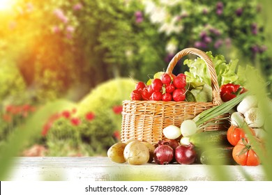 Fruits And Vegetables In Garden