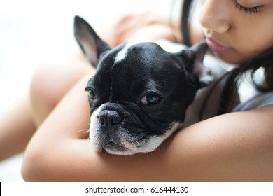 frustrated sad feeling down lonely broken heart cute asian teen girl woman hug french bulldog puppy , best friend concept with copy space