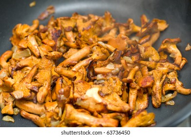 fry cantharellus