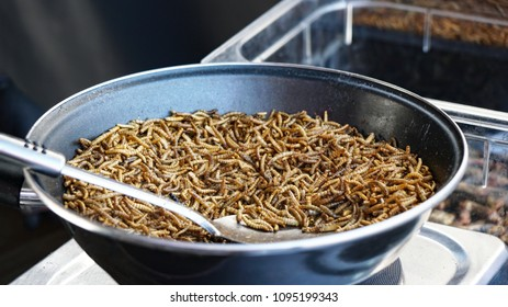 frying pan full of roasted mealworms at street food market stall, Entomophagy protein snack, insects as food, selective focus with shallow depth of field