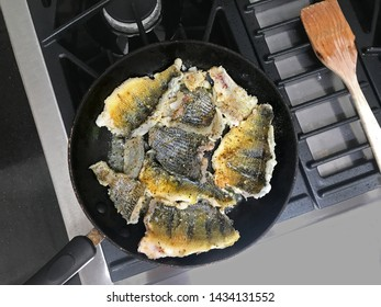 Frying perch and other fresh water fish. Early stage of cooking.