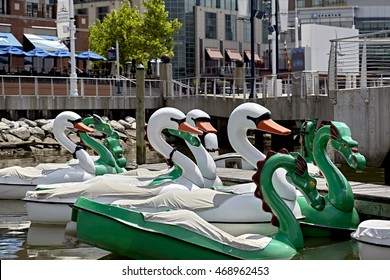 Ft. Washington, Maryland, USA - June 4, 2016: Rows of Paddle boats in the Potomac river next to pier at National Harbor
