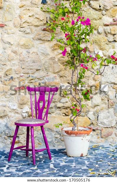 Fuchsia chair