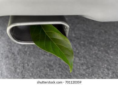 Fuel efficient car muffler with a green leaf.