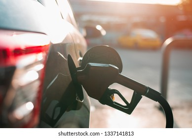 Fuel nozzle to refill fuel in car at gas station,copy space,Fueling car with petrol pump at a gas station. Petrol station. Gasoline and oil products.