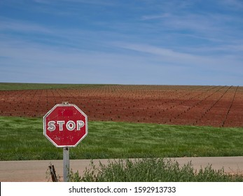 Fuente de Piedra, Spain - 28th April 2019:  A Red painted Octagonal Spanish Stop sign on a road amongst the Arable Fields of Andalucia in Spain, near to Malaga