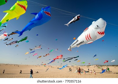 FUERTEVENTURA, SPAIN - NOVEMBER 11: Dead shark kite delivering anti-finning message at 30th International Kite Festival, November 11, 2017 in Nature park Dunes of Corralejo, Fuerteventura, Spain