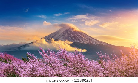 Fuji mountain and cherry blossoms in spring, Japan.
