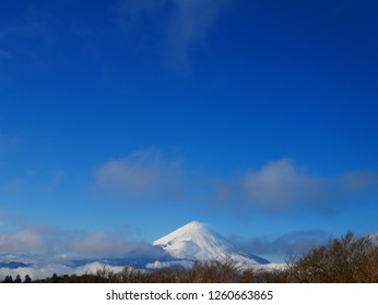 Fuji seen from the observatory