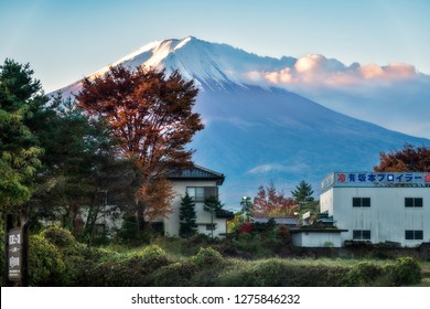Fujikawaguchiko, Japan -November 10, 2018: A spectacular view of Mount Fuji at sunrise with the legendary snow cap and some houses in the foreground at Fujikawaguchiko, a Japanese resort town.