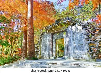 Fujikawaguchiko, Japan - November 19, 2018 : View of the colorful forest in autumn at Itchiku Kubota Art Museum near the Lake Kawaguchi in Japan on November 19, 2018.
