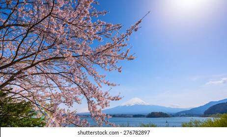 Fujisan view from Kawaguchiko lake, Japan