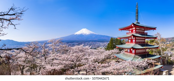 "FUJIYOSHIDA CITY, YAMANASHI PREFECTURE / JAPAN - APRIL 10 2018 : The cherry blossoms are in full bloom ""Arakurayama Sengen Park"" and the landscape of Mount Fuji. Panoramic view."
