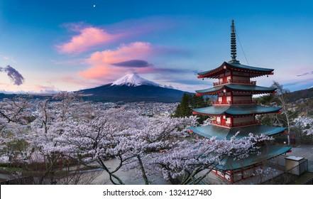Fujiyoshida, Japan at Chureito Pagoda and Mt. Fuji in the spring sunrise with cherry (Sakura) blossoms