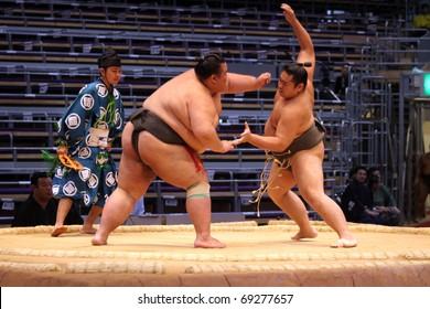 FUKUOKA, JAPAN - NOVEMBER 19: Unidentified Sumo wrestlers trying to grab each other in the Fukuoka Tournament on November 19, 2010 in Fukuoka, Japan.
