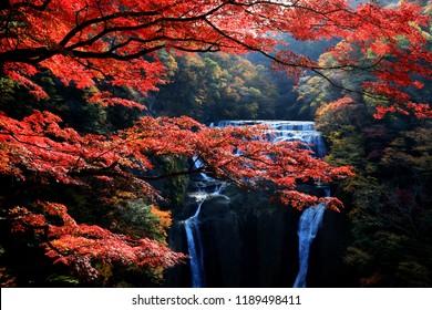 Fukuroda waterfalls, one of the Three Great Waterfalls in Japan (alongside Kegon Falls in Nikko and Nachi Falls in Kumano), during colorful autumn in Ibaraki, Japan