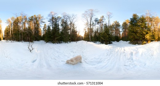 Full 360 degree equirectangula panorama with dog in winter forest