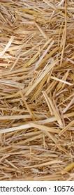 Full background of golden straw