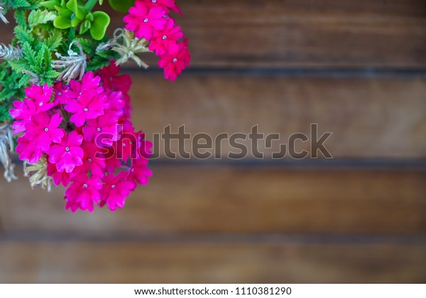 Full bloom deep pink purple magenta wild flower and green leaves foreground on blurred wooden timber plank copy space background, Selective focus, Turkey