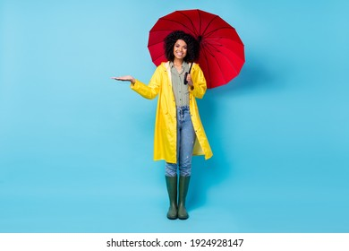 Full body photo of young afro woman happy positive smile wear raincoat hold umbrella gesture hand isolated over blue color background