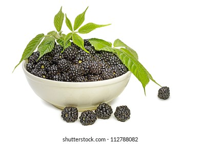 full bowl of blackberries decorated with foliage