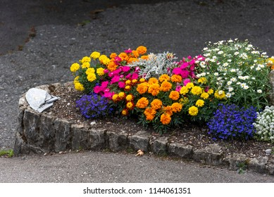 A full flower bed, containing pink, yellow, blue and orange flowers in a sidewalk, Grindewald, Bern canton,Swiss Alps, Switzerland