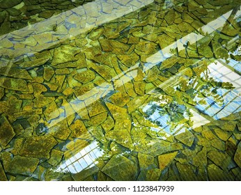 Full Frame Background of Decorative Stone Plates in the Pond with Water Reflection