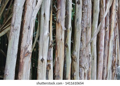 Full Frame Background of Natural Fence Made of Wooden Sticks with Selective Focus
