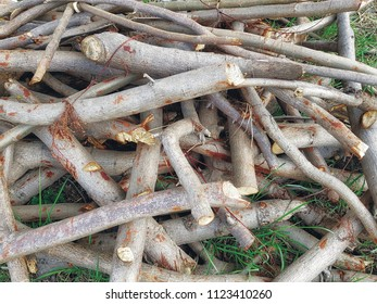 Full Frame Background of Pile of Cut Wood Twigs