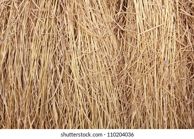 full frame close up brown straw heap