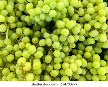 full frame of green grapes