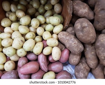 Full frame  group of different varieties and colors of  mix potatoes