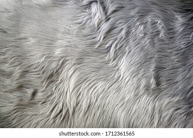 Full frame sectional close-up view of a soft gray faux longhair fur rug