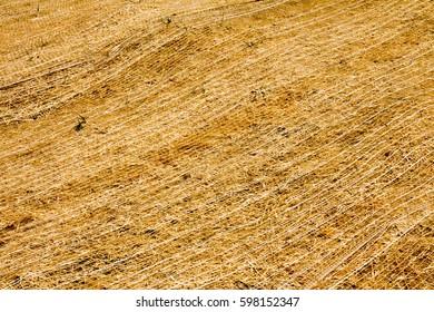 Full frame straw erosion control on a hillside