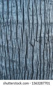 Full frame of tree bark