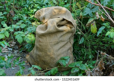 full of garbage a brown bag of burlap among the green vegetation in the park