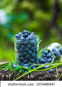 full glass jar of ripe fresh blueberry in garden
