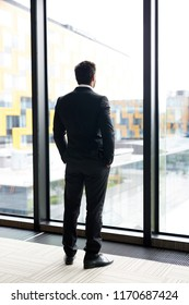 Full length back view portrait of successful businessman standing by window and looking outside with his hands in pockets, copy space
